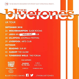 bluetones tour