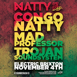 natty electric